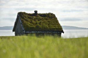 Chcete zelenou střechu?
